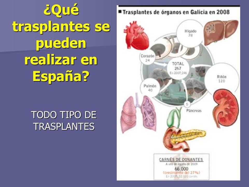 ¿Qué trasplantes se pueden realizar en España