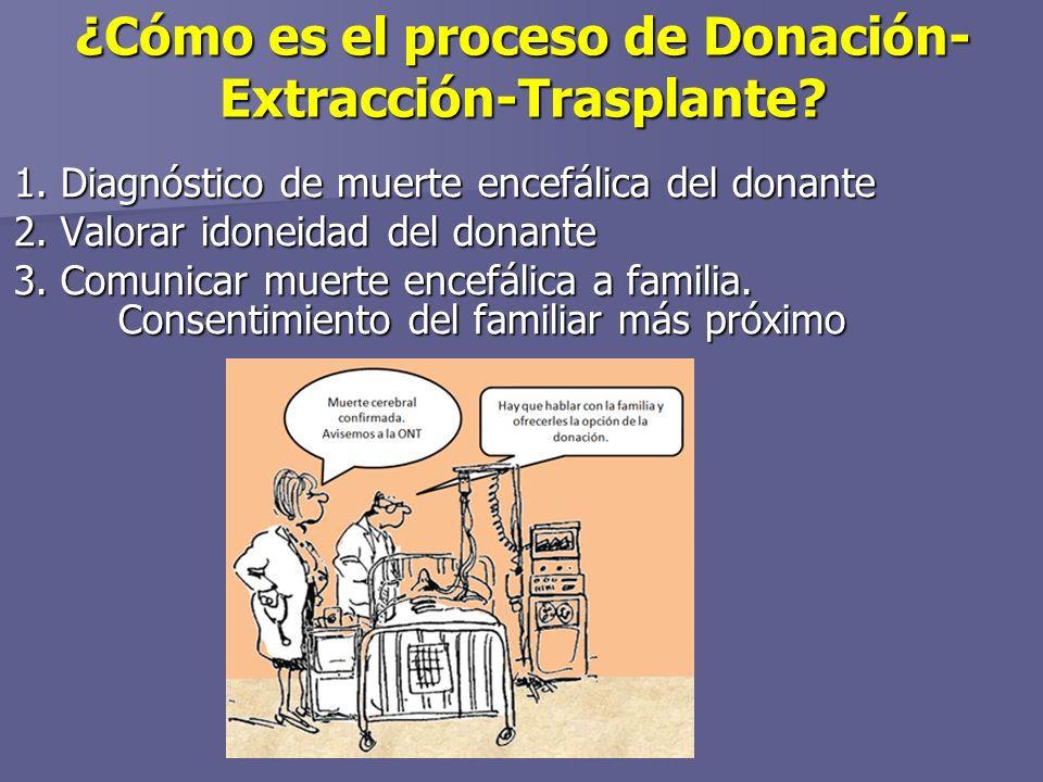 ¿Cómo es el proceso de Donación-Extracción-Trasplante