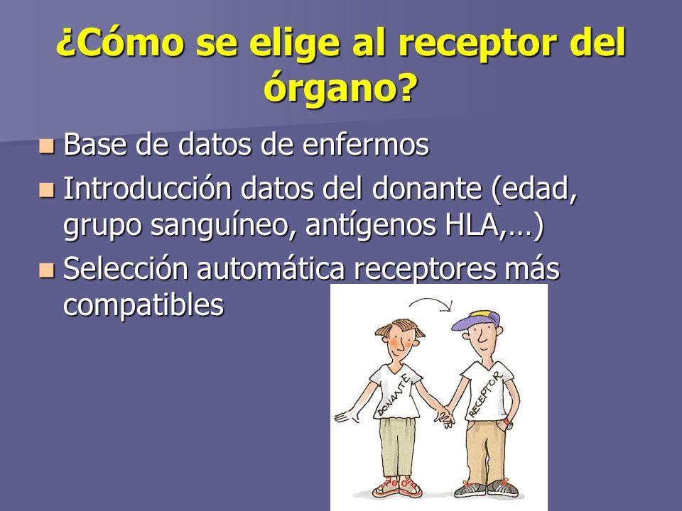 ¿Cómo se elige al receptor del órgano