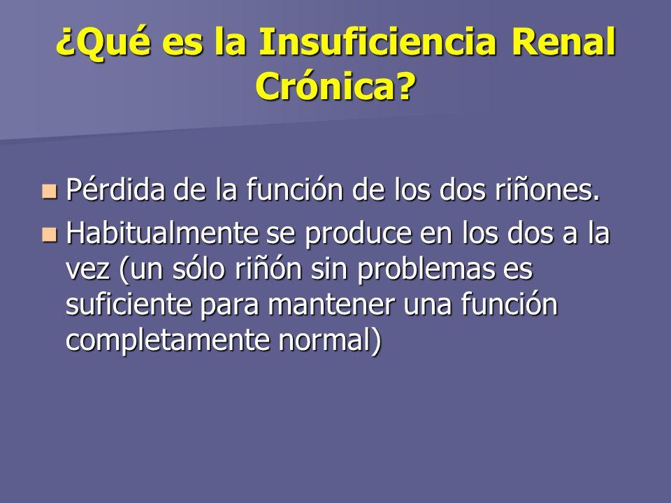 ¿Qué es la Insuficiencia Renal Crónica