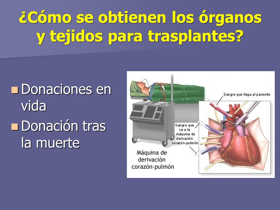 ¿Cómo se obtienen los órganos y tejidos para trasplantes