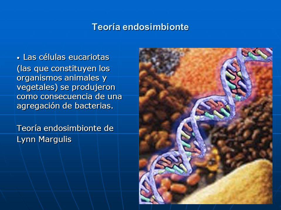 Las células eucariotas
