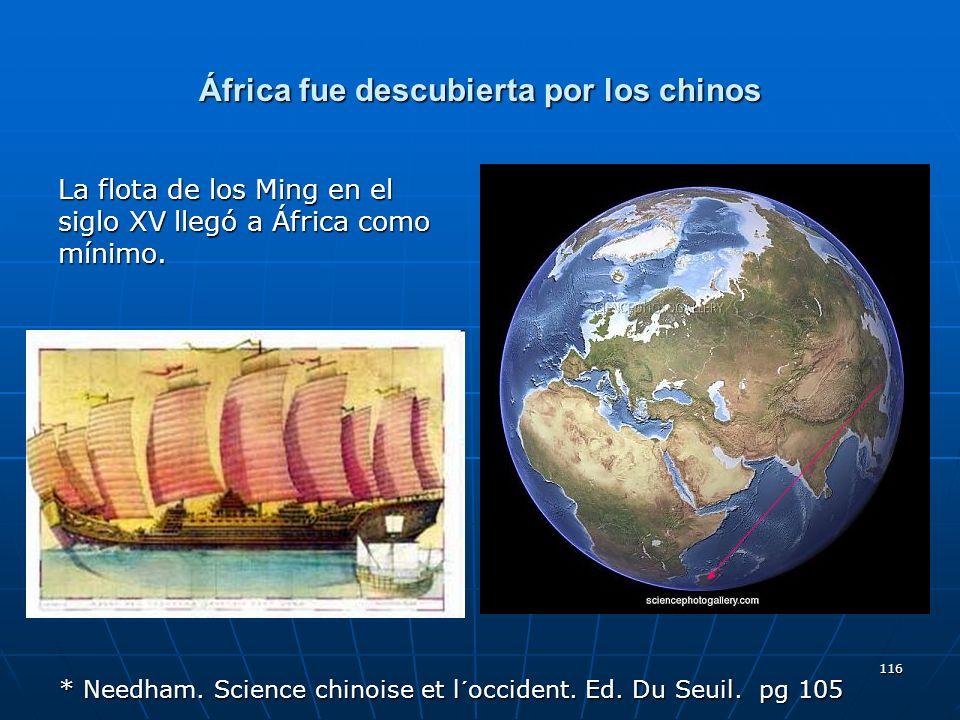 África fue descubierta por los chinos