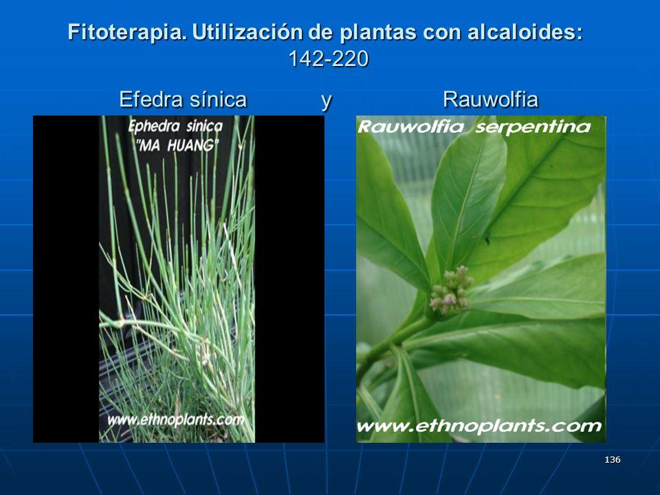 Fitoterapia. Utilización de plantas con alcaloides: 142-220 Efedra sínica y Rauwolfia
