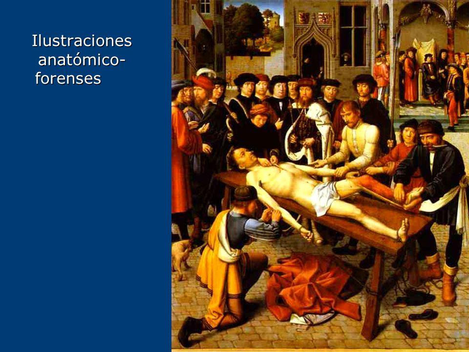 Ilustraciones anatómico-forenses
