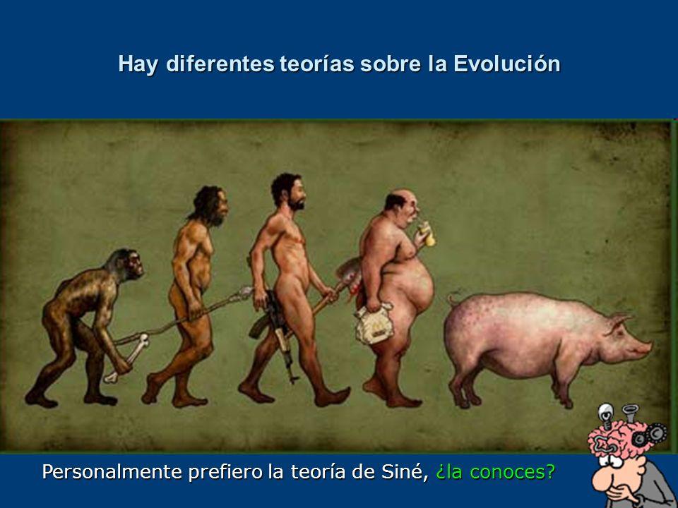 Hay diferentes teorías sobre la Evolución