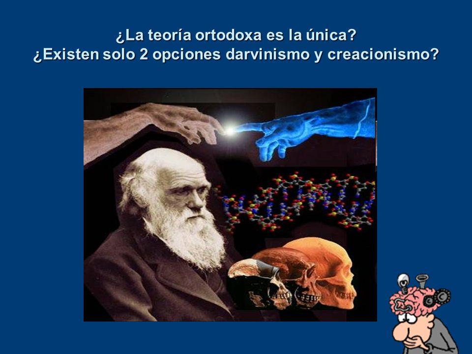 ¿La teoría ortodoxa es la única