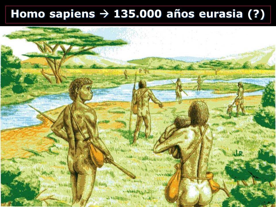 Homo sapiens  135.000 años eurasia ( )