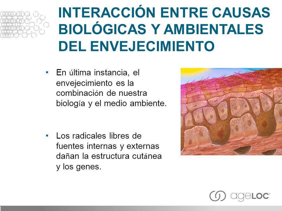 INTERACCIÓN ENTRE CAUSAS BIOLÓGICAS Y AMBIENTALES DEL ENVEJECIMIENTO