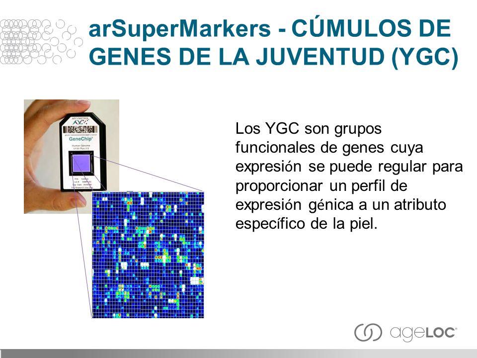 arSuperMarkers - CÚMULOS DE GENES DE LA JUVENTUD (YGC)