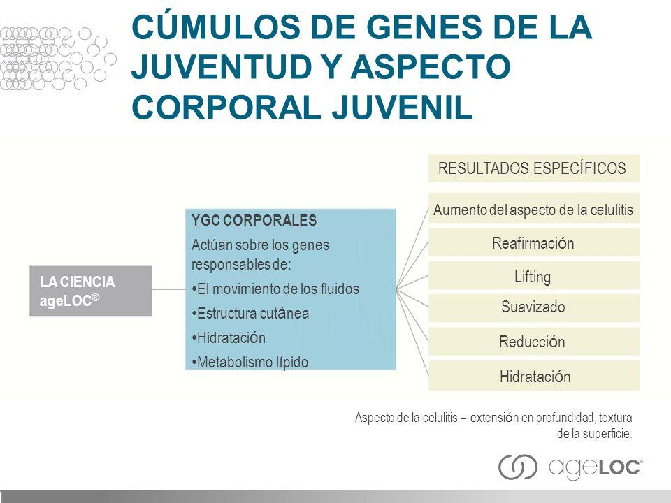 CÚMULOS DE GENES DE LA JUVENTUD Y ASPECTO CORPORAL JUVENIL