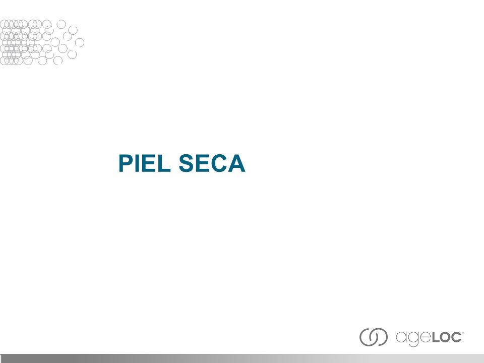 PIEL SECA 31