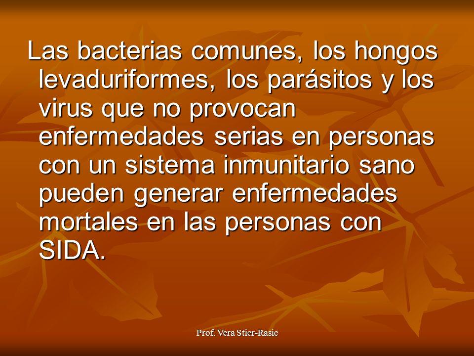 Las bacterias comunes, los hongos levaduriformes, los parásitos y los virus que no provocan enfermedades serias en personas con un sistema inmunitario sano pueden generar enfermedades mortales en las personas con SIDA.
