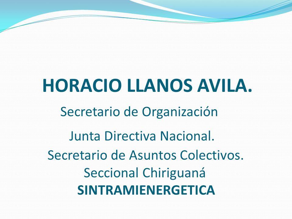 HORACIO LLANOS AVILA. Secretario de Organización Junta Directiva Nacional.
