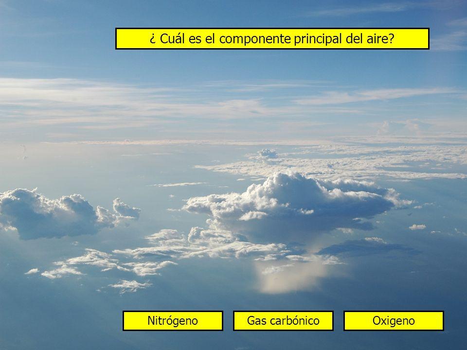 ¿ Cuál es el componente principal del aire