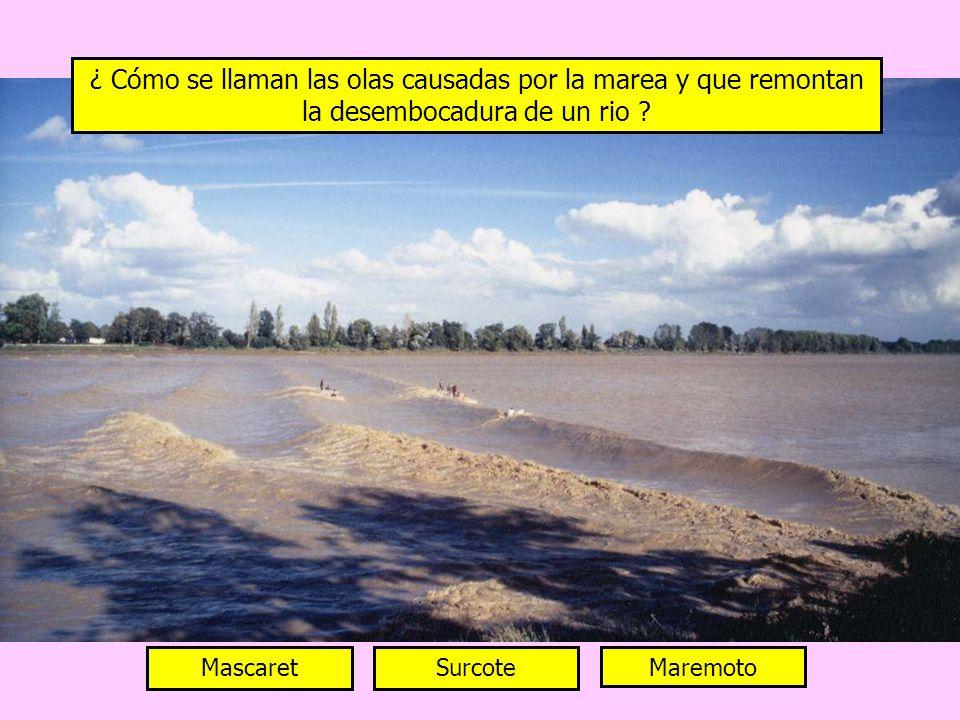 ¿ Cómo se llaman las olas causadas por la marea y que remontan la desembocadura de un rio
