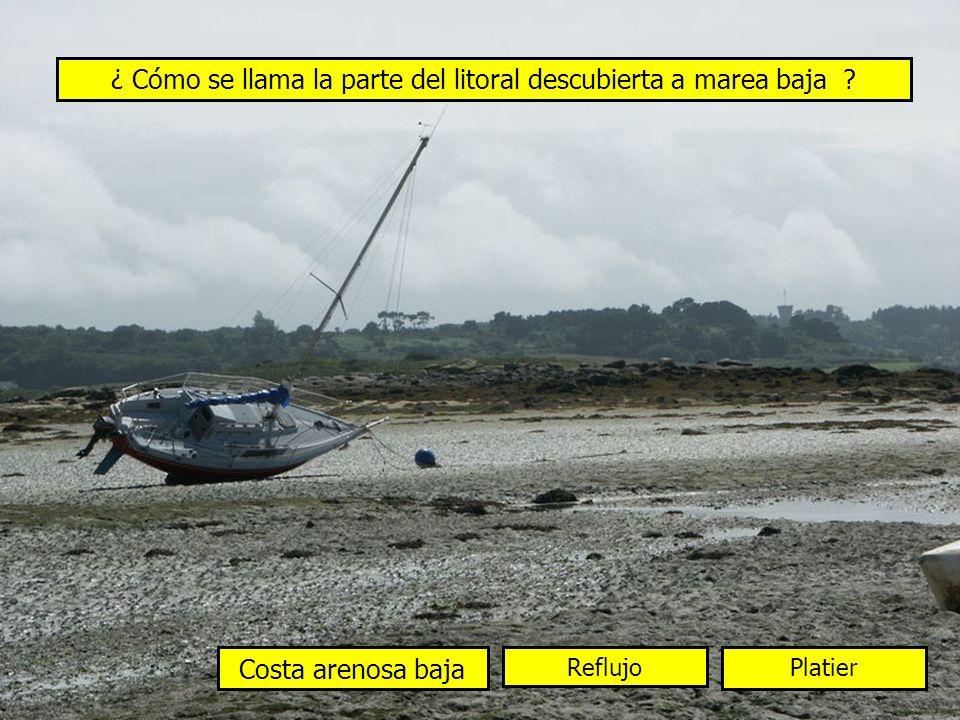¿ Cómo se llama la parte del litoral descubierta a marea baja