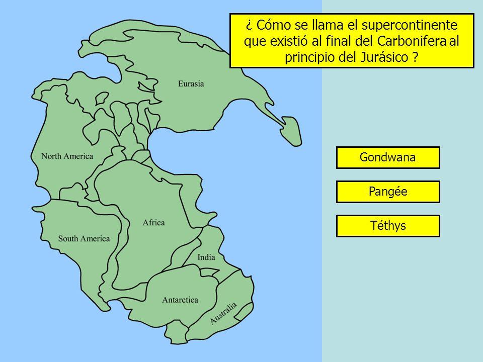 ¿ Cómo se llama el supercontinente que existió al final del Carbonifera al principio del Jurásico