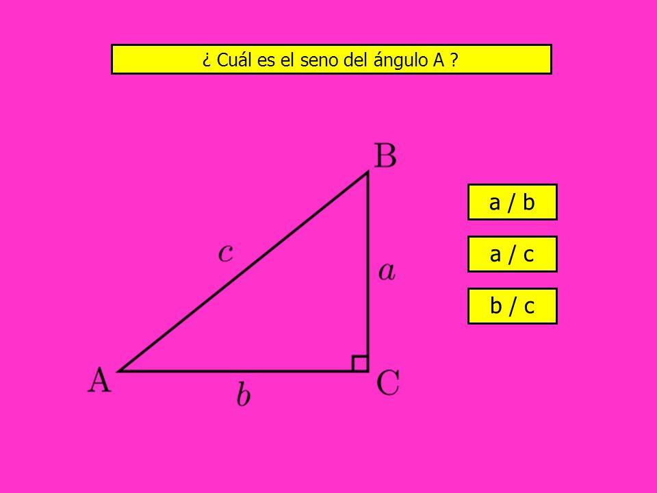 ¿ Cuál es el seno del ángulo A