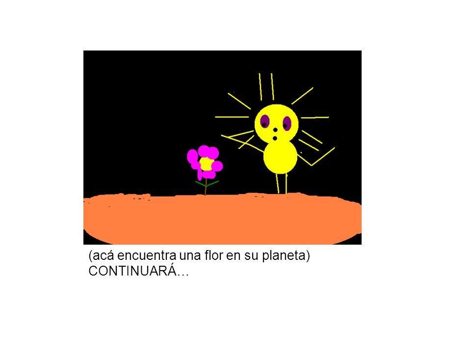 (acá encuentra una flor en su planeta)