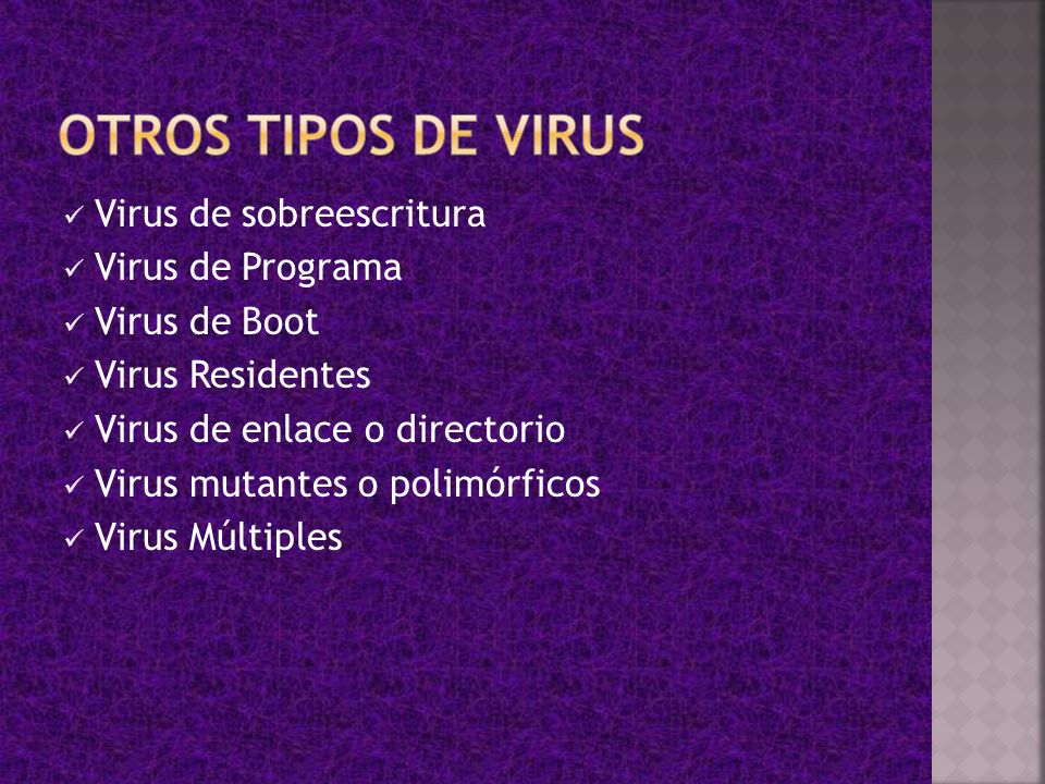 OTROS TIPOS DE VIRUS Virus de sobreescritura Virus de Programa