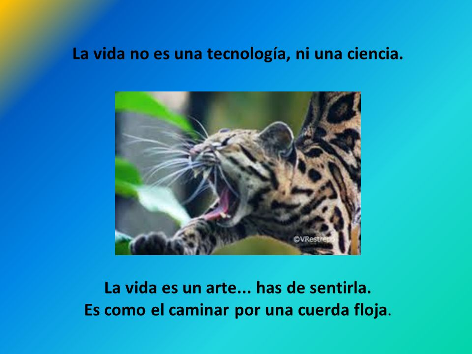 La vida no es una tecnología, ni una ciencia.