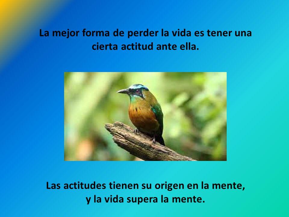 Las actitudes tienen su origen en la mente, y la vida supera la mente.