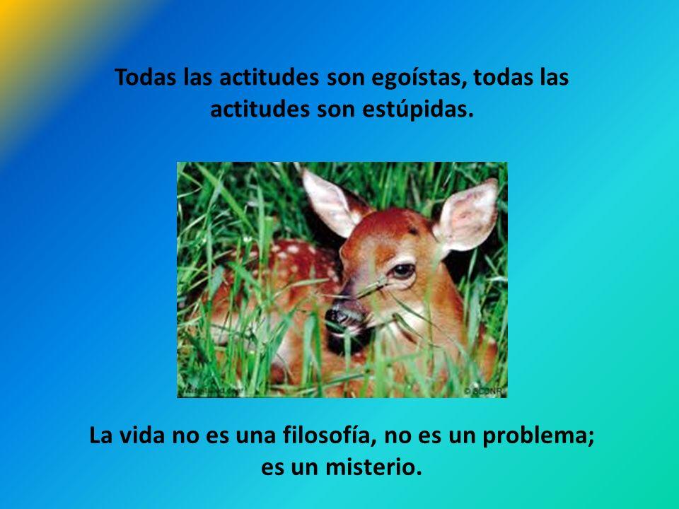 Todas las actitudes son egoístas, todas las actitudes son estúpidas.