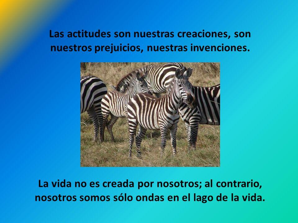 Las actitudes son nuestras creaciones, son nuestros prejuicios, nuestras invenciones.