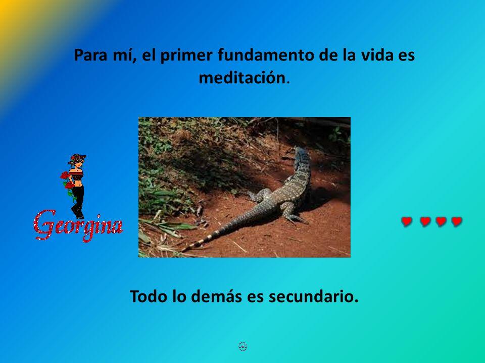 Para mí, el primer fundamento de la vida es meditación.