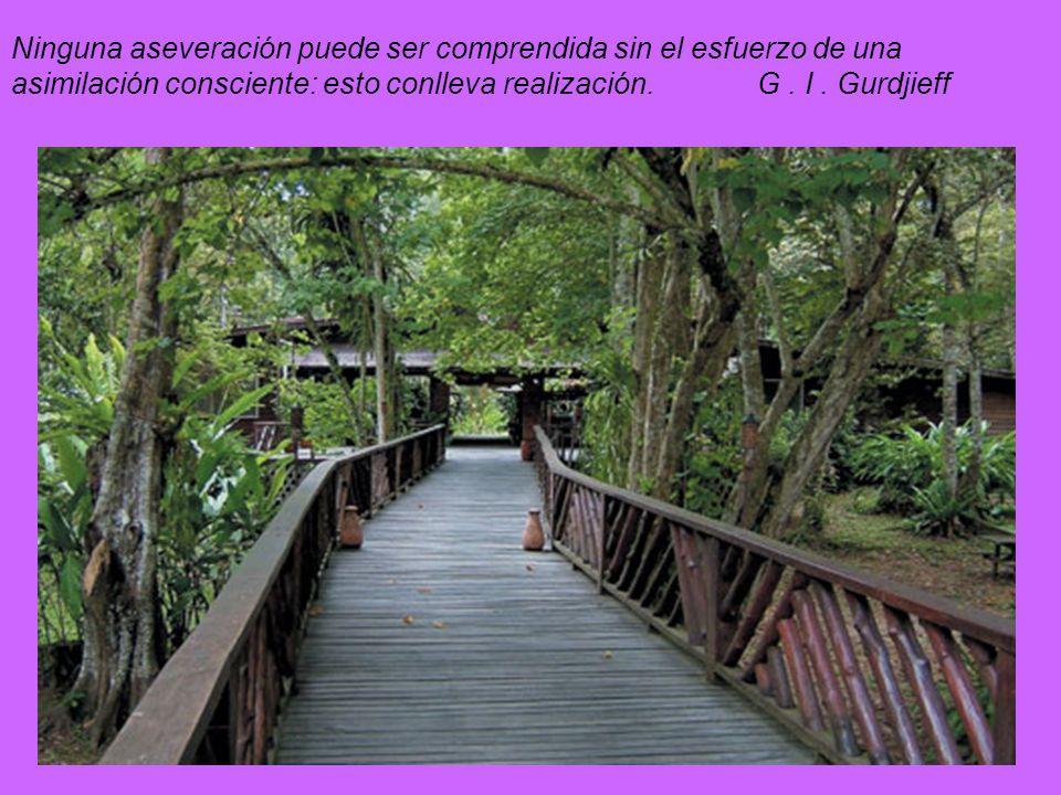 Ninguna aseveración puede ser comprendida sin el esfuerzo de una asimilación consciente: esto conlleva realización.