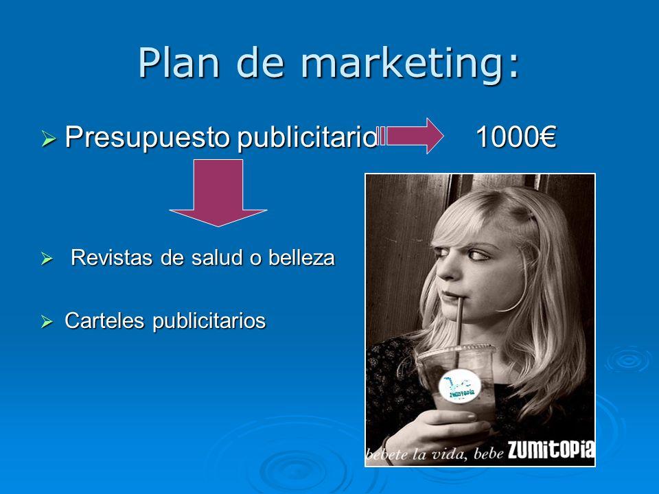 Plan de marketing: Presupuesto publicitario 1000€
