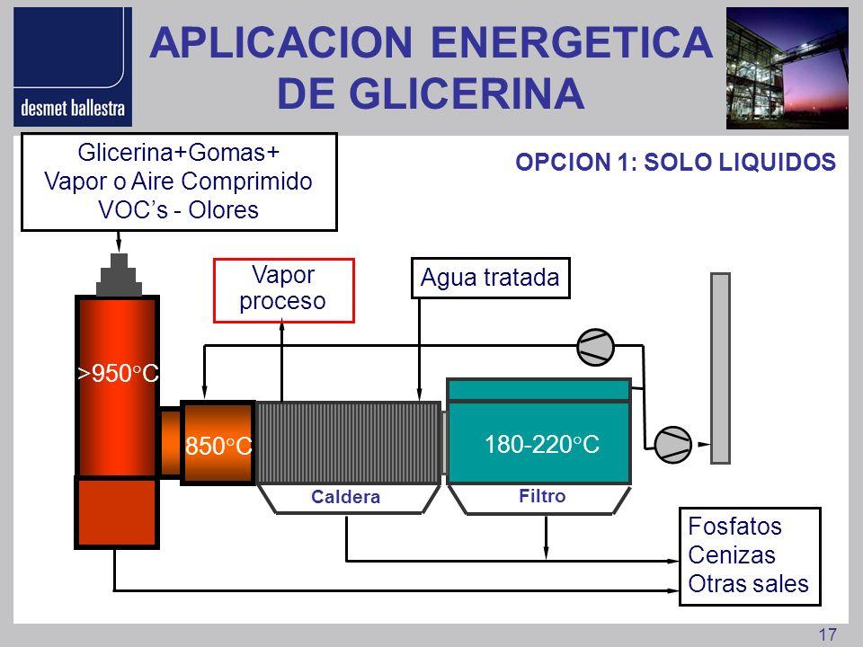 APLICACION ENERGETICA DE GLICERINA