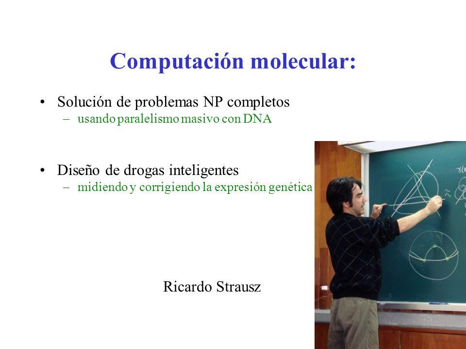 Computación molecular: