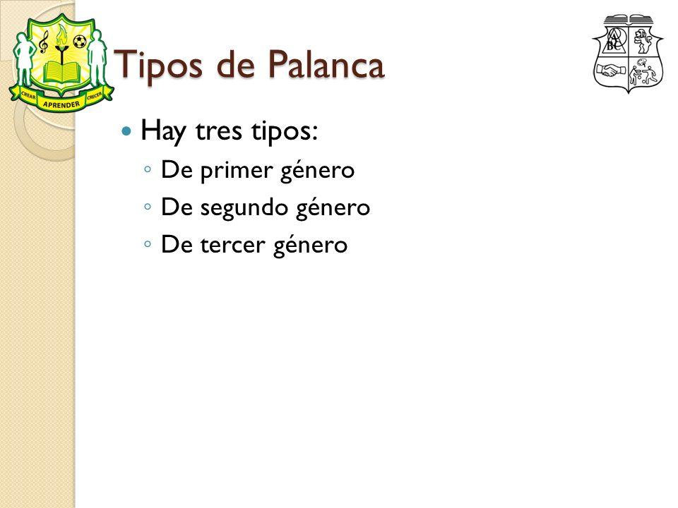 Tipos de Palanca Hay tres tipos: De primer género De segundo género