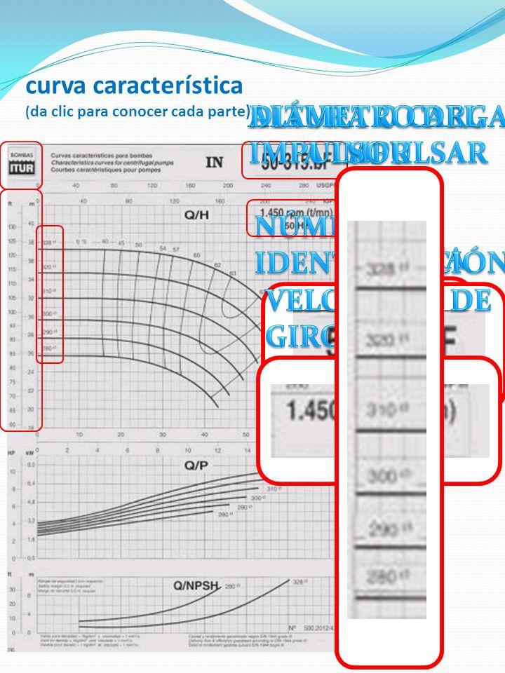 curva característica (da clic para conocer cada parte)