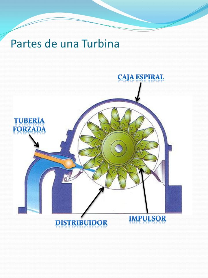 Partes de una Turbina Caja espiral TUBERÍA FORZADA IMPULSOR