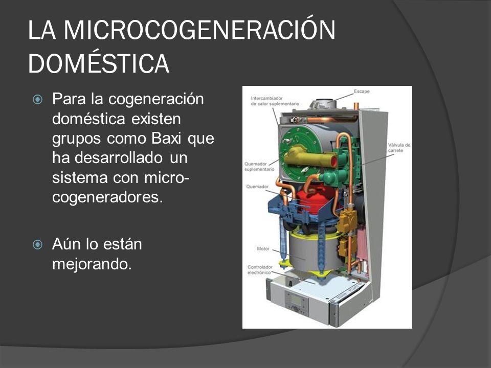 LA MICROCOGENERACIÓN DOMÉSTICA
