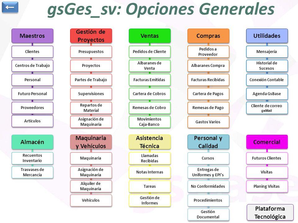 gsGes_sv: Opciones Generales