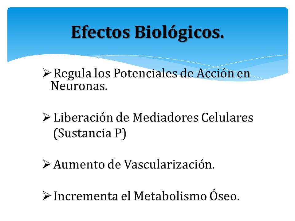 Efectos Biológicos. Regula los Potenciales de Acción en Neuronas.