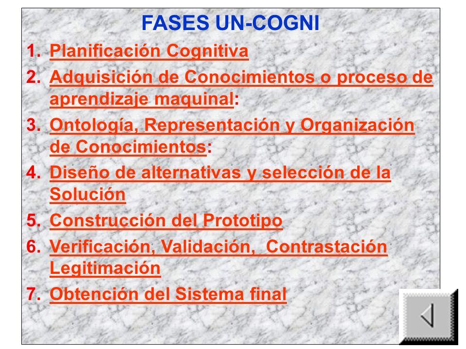 FASES UN-COGNI Planificación Cognitiva