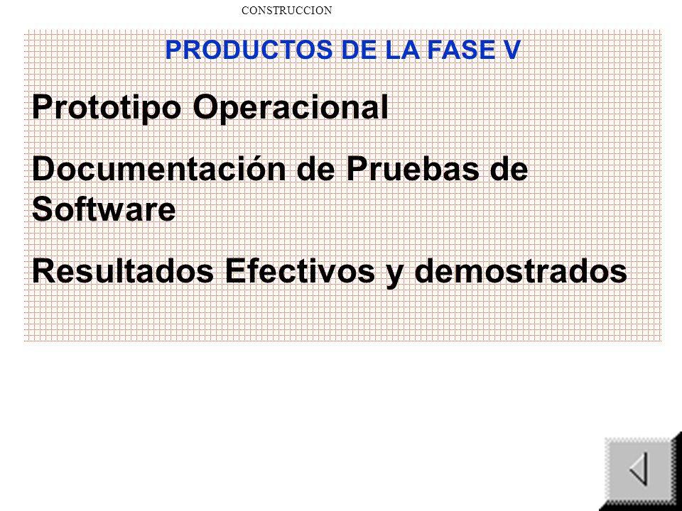 Prototipo Operacional Documentación de Pruebas de Software