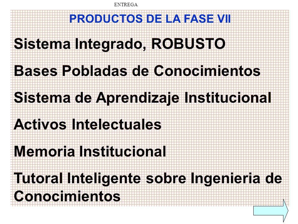 PRODUCTOS DE LA FASE VII