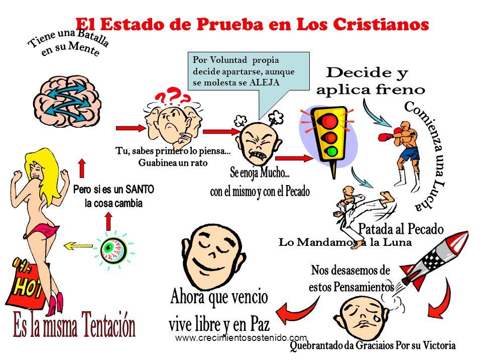 El Estado de Prueba en Los Cristianos