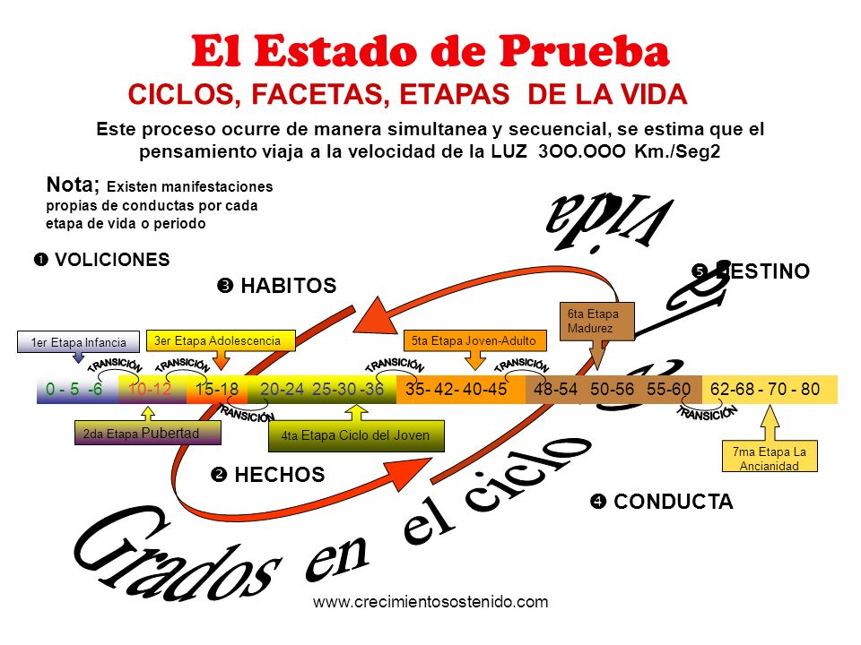 El Estado de Prueba CICLOS, FACETAS, ETAPAS DE LA VIDA