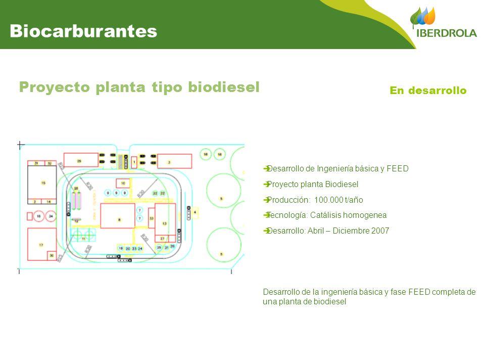 Biocarburantes Proyecto planta tipo biodiesel En desarrollo