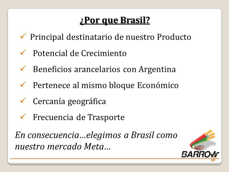 En consecuencia…elegimos a Brasil como nuestro mercado Meta…