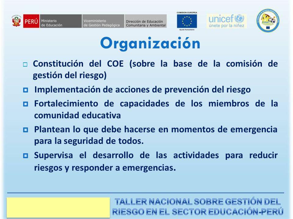Organización Constitución del COE (sobre la base de la comisión de gestión del riesgo) Implementación de acciones de prevención del riesgo.