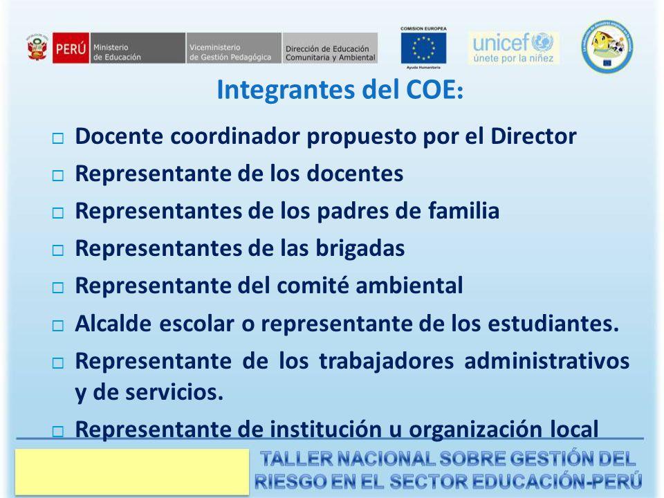 Integrantes del COE: Docente coordinador propuesto por el Director
