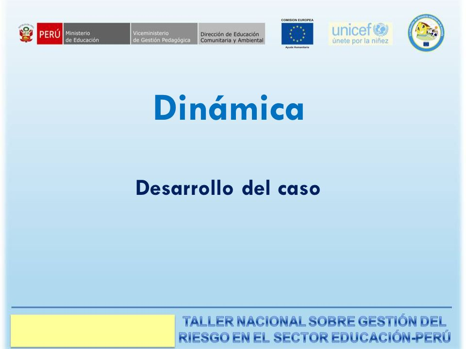 Dinámica Desarrollo del caso Manual del Instructor